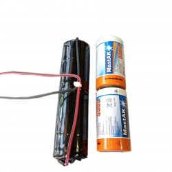 Сборка для аварийного освещения 2.4V 5.5Ah